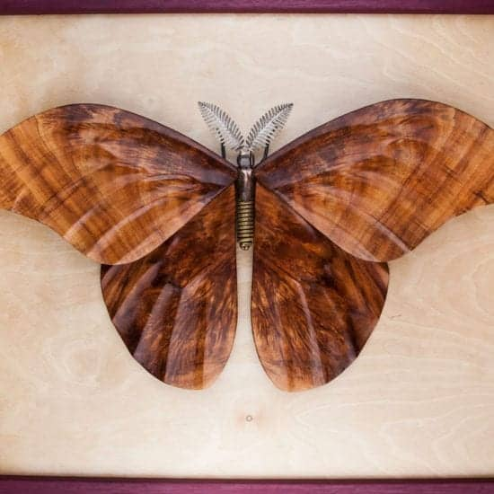Wildlife Sculpture | Moth Insect